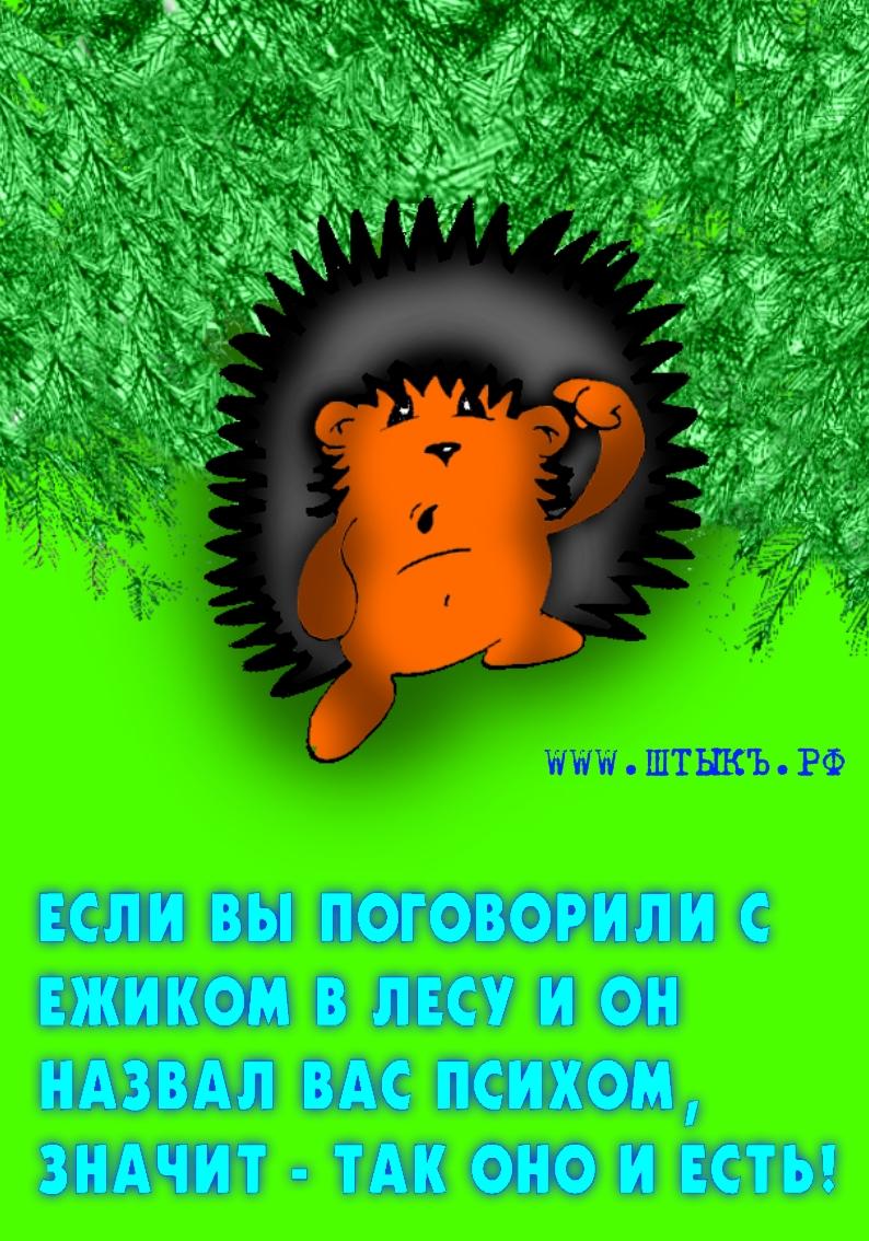 Карикатура пословица про ежика