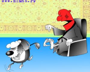 Анекдот про собаку в картинках