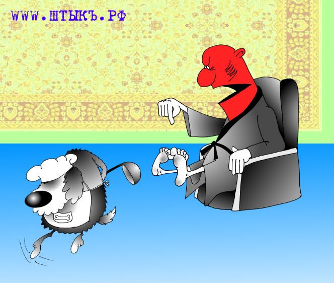 Хозяин и глупая собака