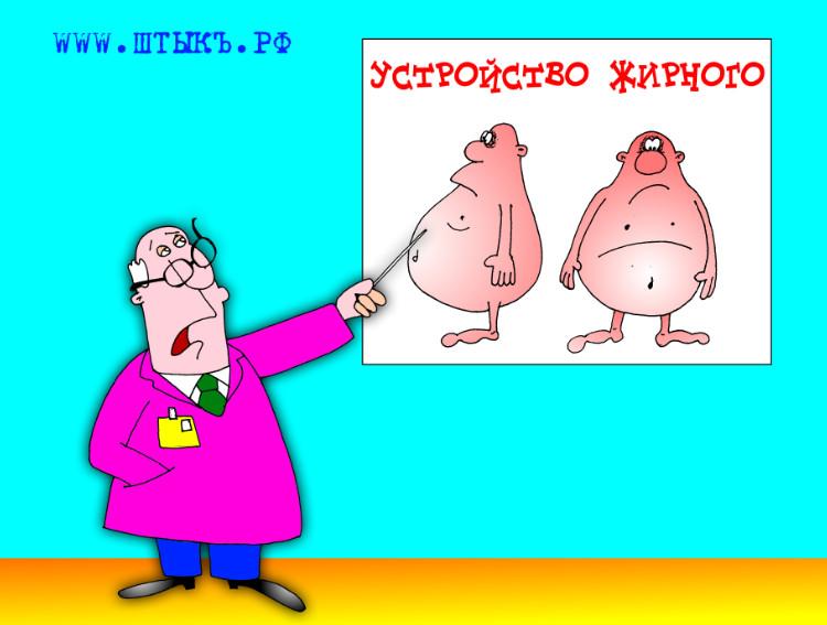 Веселый анекдот про жирного