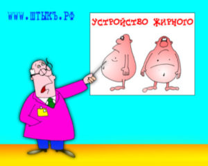 Карикатура про лишний вес