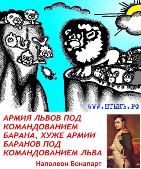 Афоризм с карикатурой о львах