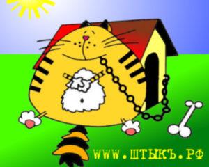 Анекдот в картинках про кота