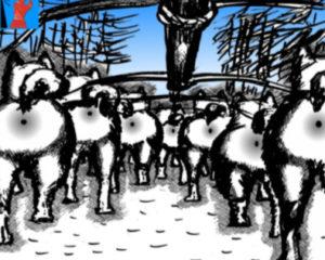 Выражение в карикатуре про жизнь