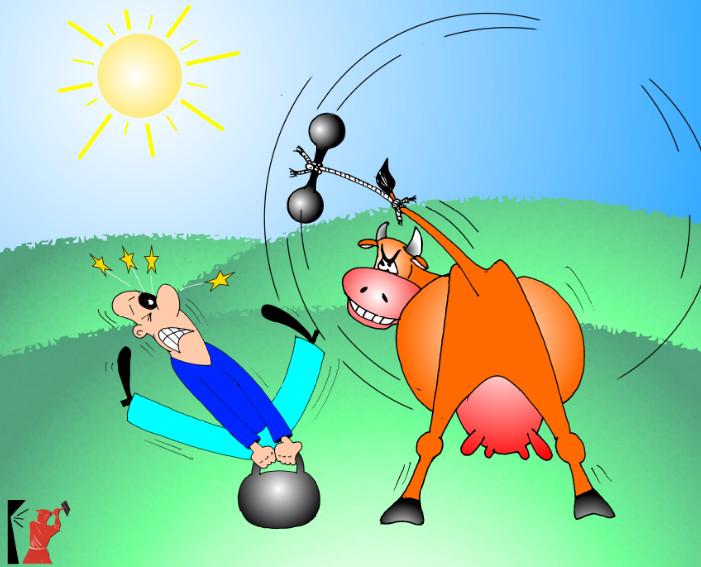 Самые смешные анекдоты и приколы с картинками: про корову и гантели
