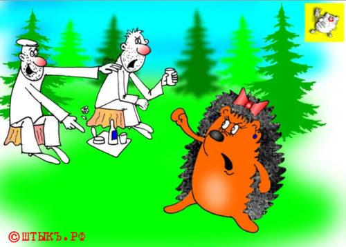 Анекдот про ежовые гулянки. Карикатура