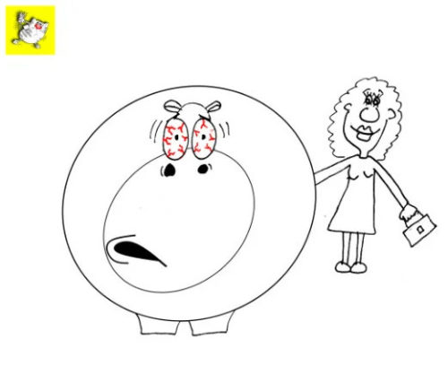 Приколы про животных: В какую сторону кормить бегемота. Карикатура