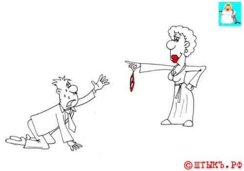 Анекдот про мужа, жену и стринги . Карикатура