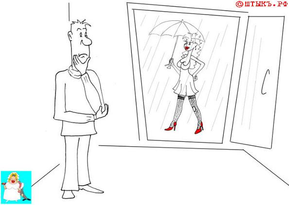 Поучительный анекдот про случайную дырку. Карикатура