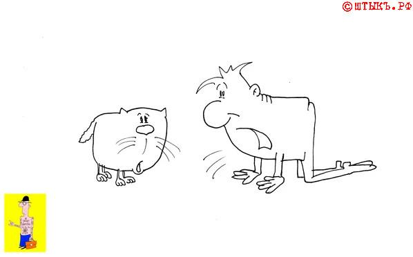 Смешной короткий анекдот про кота. Карикатура