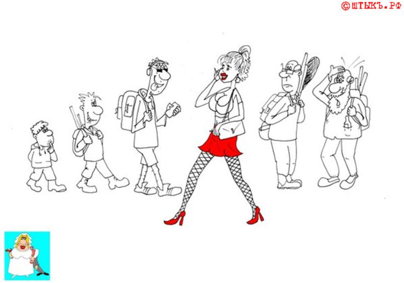 Анекдот про устройство мужского мозга. Карикатура